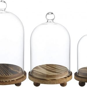 Whole Housewares Mini Glass Display Dome Cloche with Wood Base