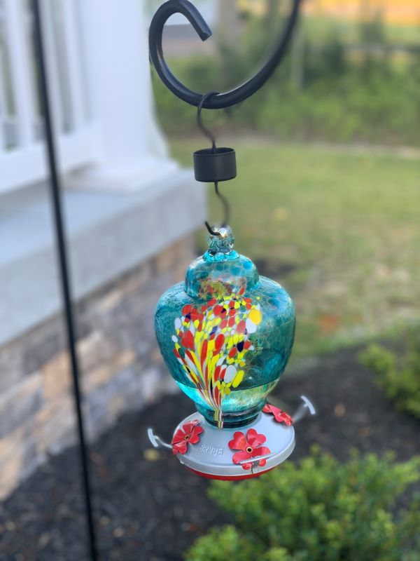 15 Tips To Attract Hummingbirds A.jpg