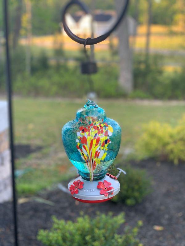 15 Tips To Attract Hummingbirds B.jpg