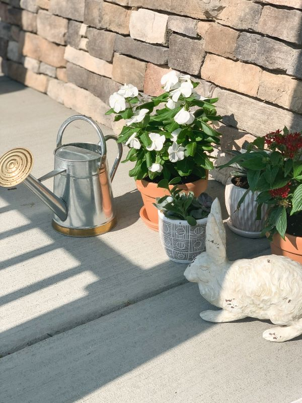 What to place on your plant stand.jpeg