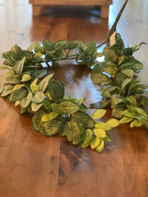 Perfect Greenery for Wreathes.jpeg
